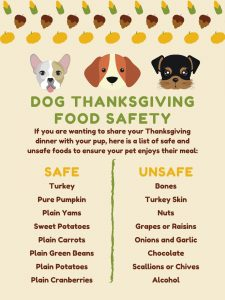 Dog Thanksgiving Food Safety-Nov-2020